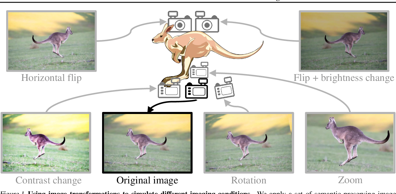 Figure 1 for Classification Confidence Estimation with Test-Time Data-Augmentation
