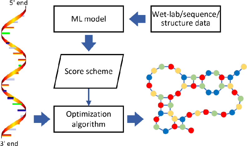 Figure 4 for Review of Machine-Learning Methods for RNA Secondary Structure Prediction