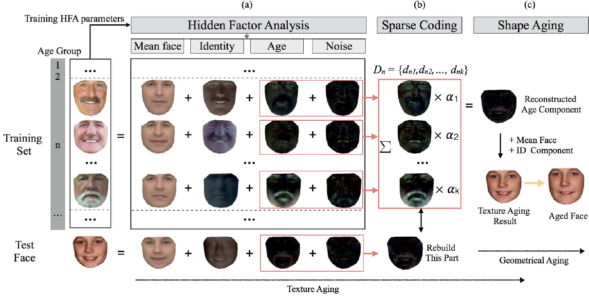 Figure 1 for Face Aging Effect Simulation using Hidden Factor Analysis Joint Sparse Representation