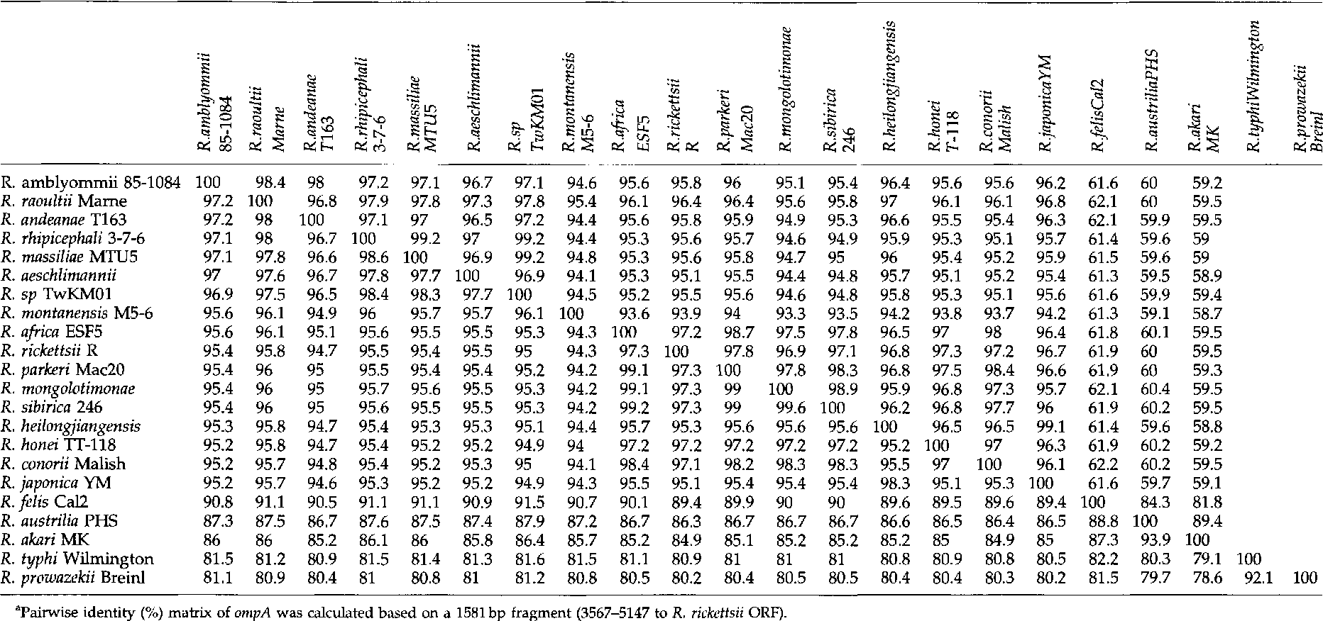 TABLE 2. PAIRWISE IDENTITY(%) MATRIX OF OMPA• (UPPER RIGHT) AND OMPB (LOWER LEFT) BETWEEN VARIOUS RICKETTSIA SPECIES