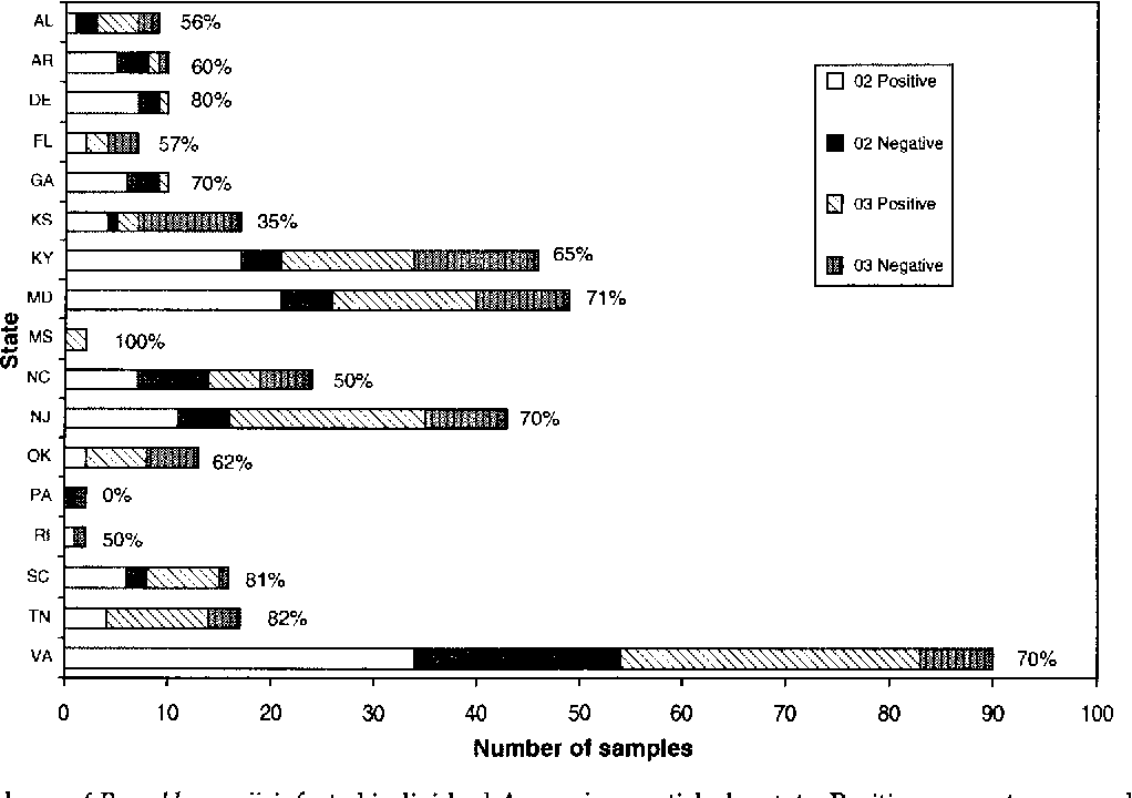 FIG. 4. Prevalence of R. amblyommii-infected individual A. americanum ticks by state. Positive percentages are shown next to the bars.
