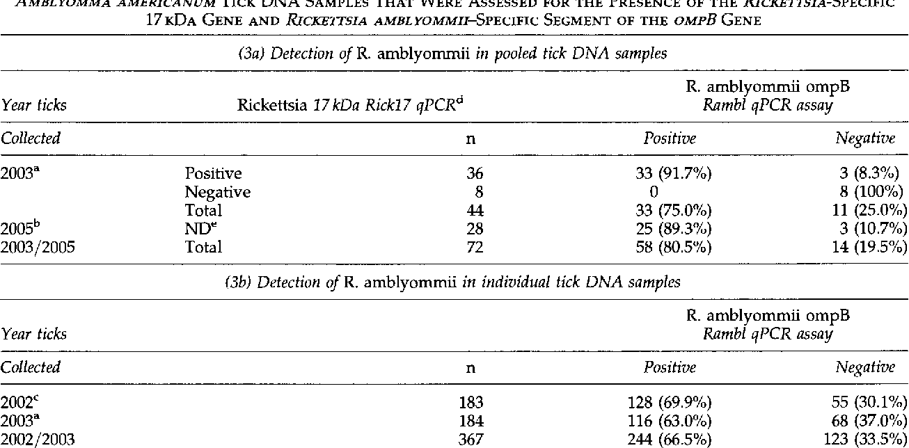 TABLE 3. DETECTION OF RICKETTSIA AMBLYOMMII IN ALIQUOTS OF POOLED AND INDIVIDUAL