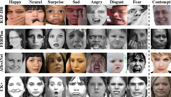 Figure 1 for Robust Facial Expression Recognition with Convolutional Visual Transformers