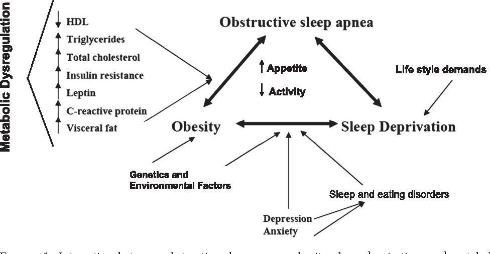 Figure 1. Interaction between obstructive sleep apnea, obesity, sleep deprivation, and metabolic abnormalities. HDL 5 high-density lipoprotein.