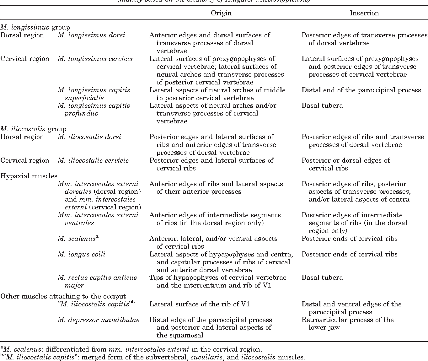 Homologies of the longissimus, iliocostalis, and hypaxial muscles in ...