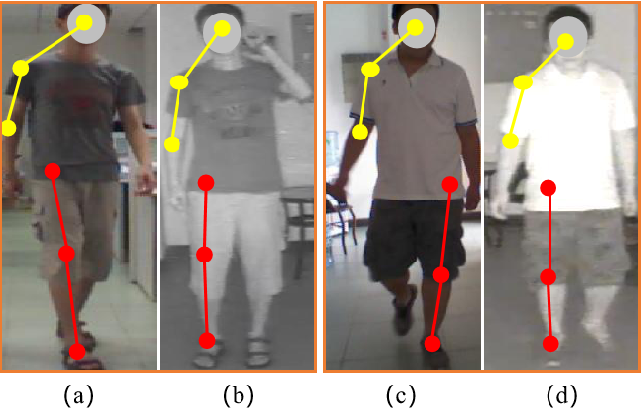 Figure 2 for Exploring Modality-shared Appearance Features and Modality-invariant Relation Features for Cross-modality Person Re-Identification