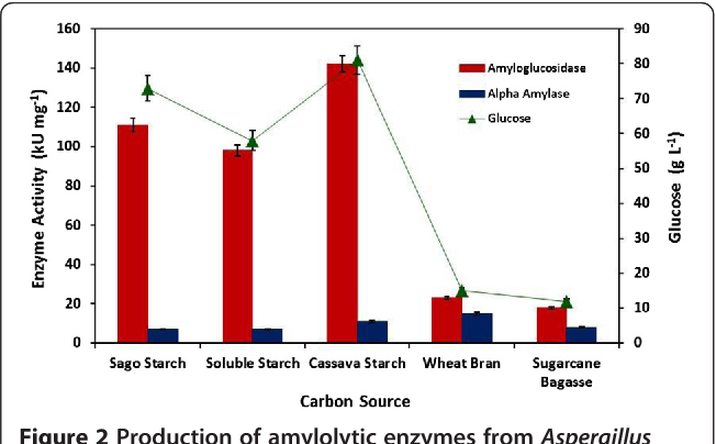 Figure 2 Production of amylolytic enzymes from Aspergillus fumigatus KIBGE-IB33 and glucose formation using various carbon sources.