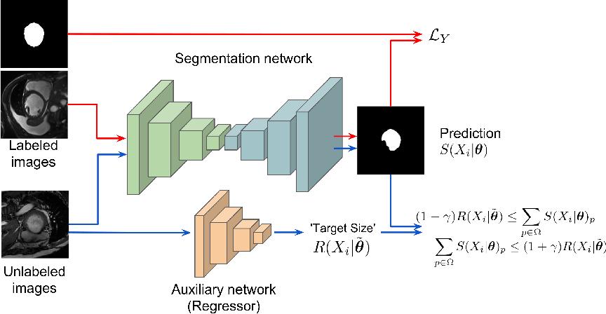 Figure 1 for Curriculum semi-supervised segmentation