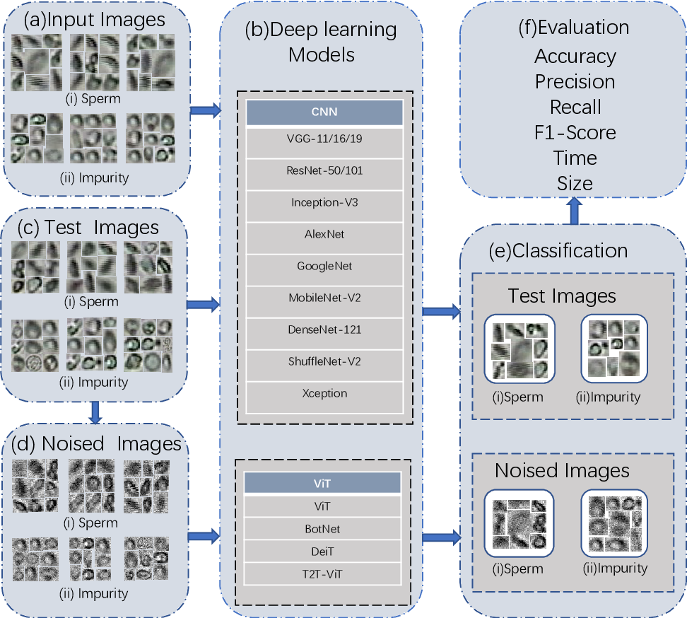 Figure 1 for A Comparison for Anti-noise Robustness of Deep Learning Classification Methods on a Tiny Object Image Dataset: from Convolutional Neural Network to Visual Transformer and Performer