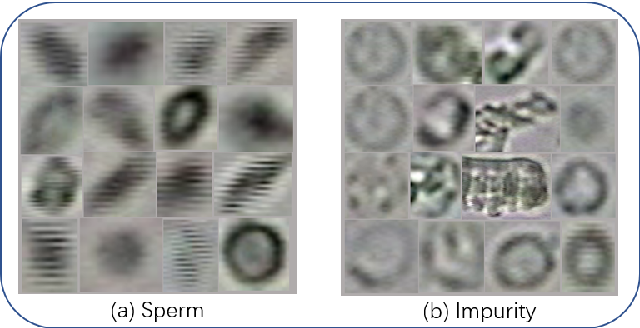 Figure 4 for A Comparison for Anti-noise Robustness of Deep Learning Classification Methods on a Tiny Object Image Dataset: from Convolutional Neural Network to Visual Transformer and Performer