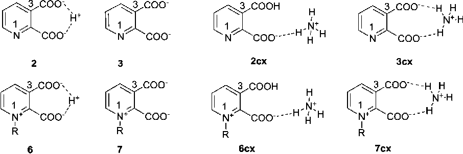 FIGURE 3. Possible substrates for decarboxylation.
