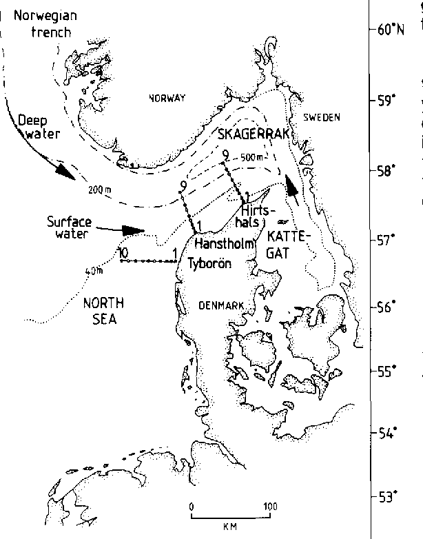 Fig. 1. The Skagerrak, showing the station net and indicating the mean circulation.