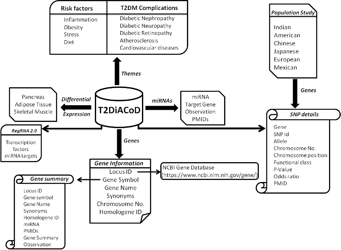 T2DiACoD: A Gene Atlas of Type 2 Diabetes Mellitus Associated