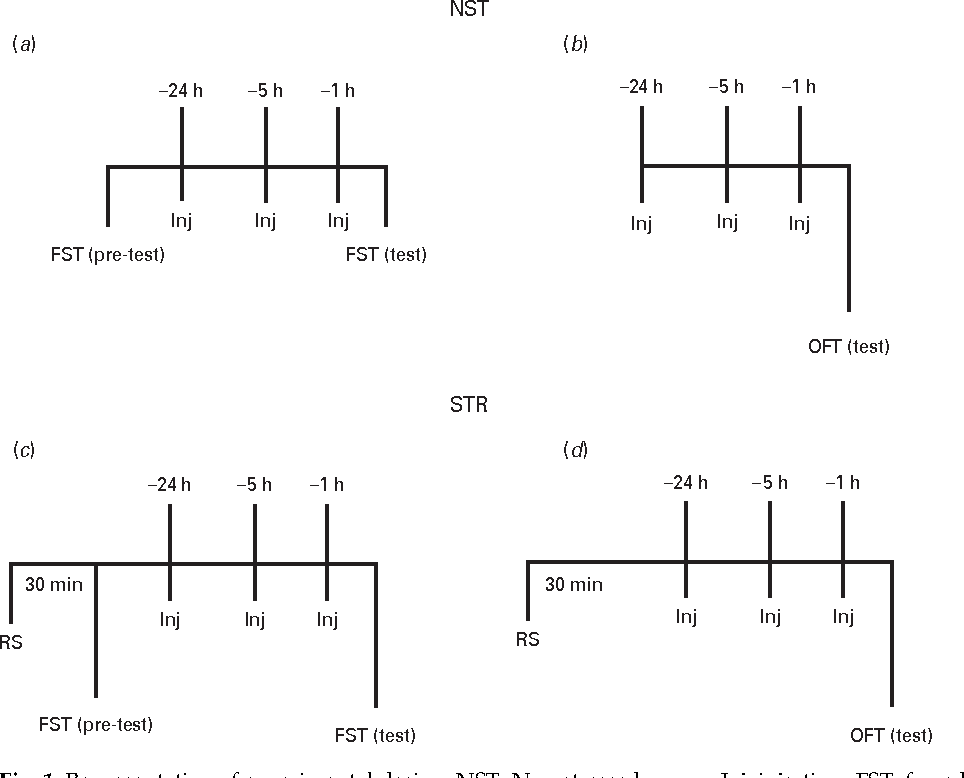 Fig. 1. Representation of experimental design. NST, Non-stressed group; Inj, injection ; FST, forced swim test ; OFT, open field test ; STR, stressed group; RS, restraint stress.