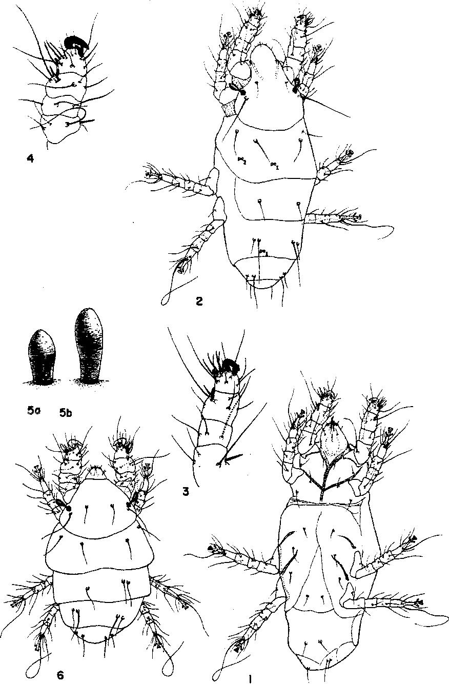 figure 1-9