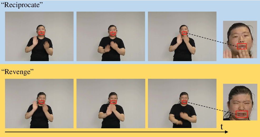 Figure 1 for Global-local Enhancement Network for NMFs-aware Sign Language Recognition