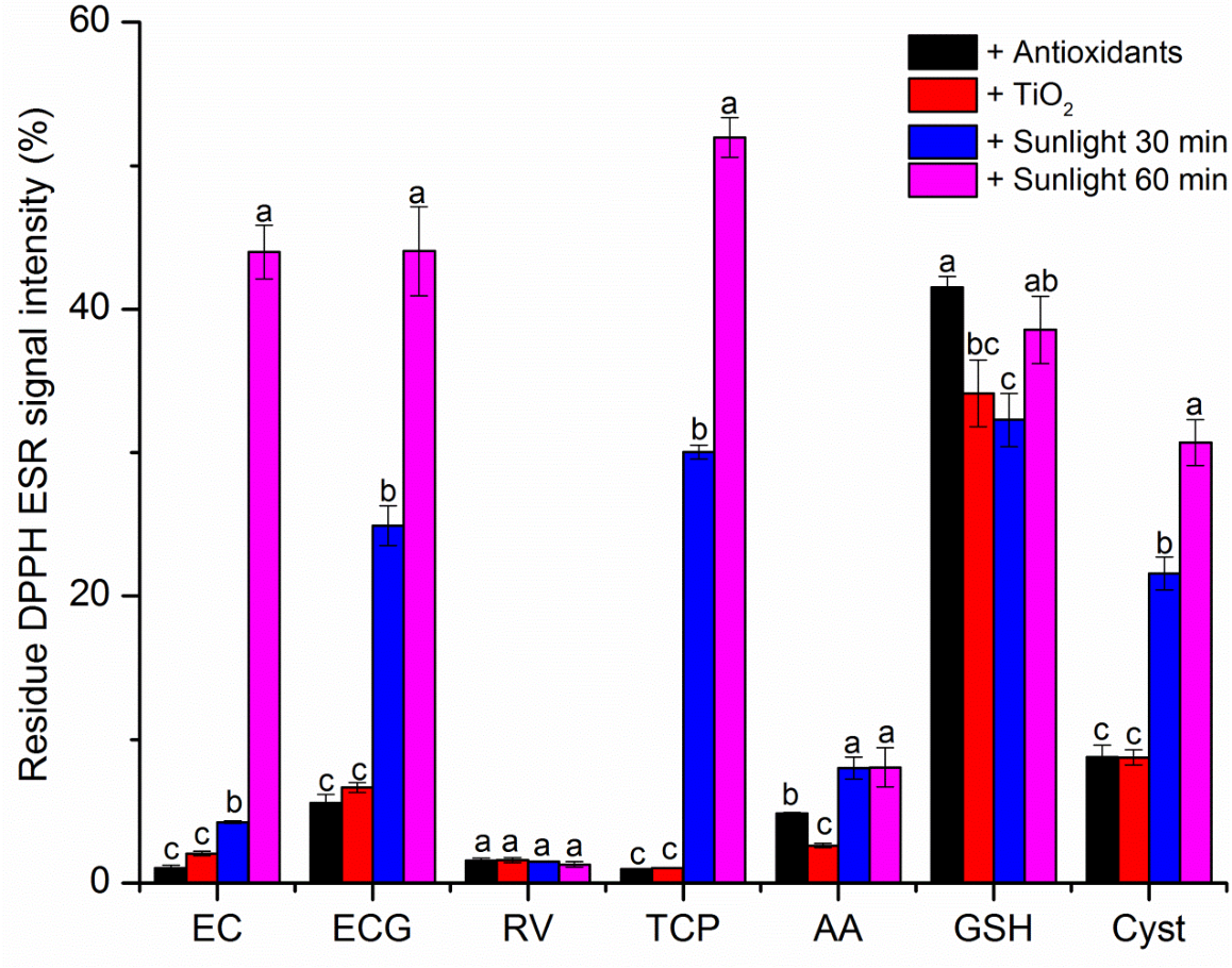 PDF] COMBINED EFFECTS OF SUNLIGHT AND TITANIUM DIOXIDE NANOPARTICLES