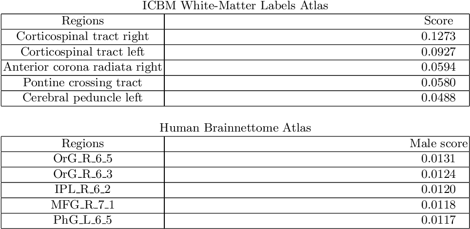 Figure 4 for Interpretable Deep Learning for Pattern Recognition in Brain Differences Between Men and Women