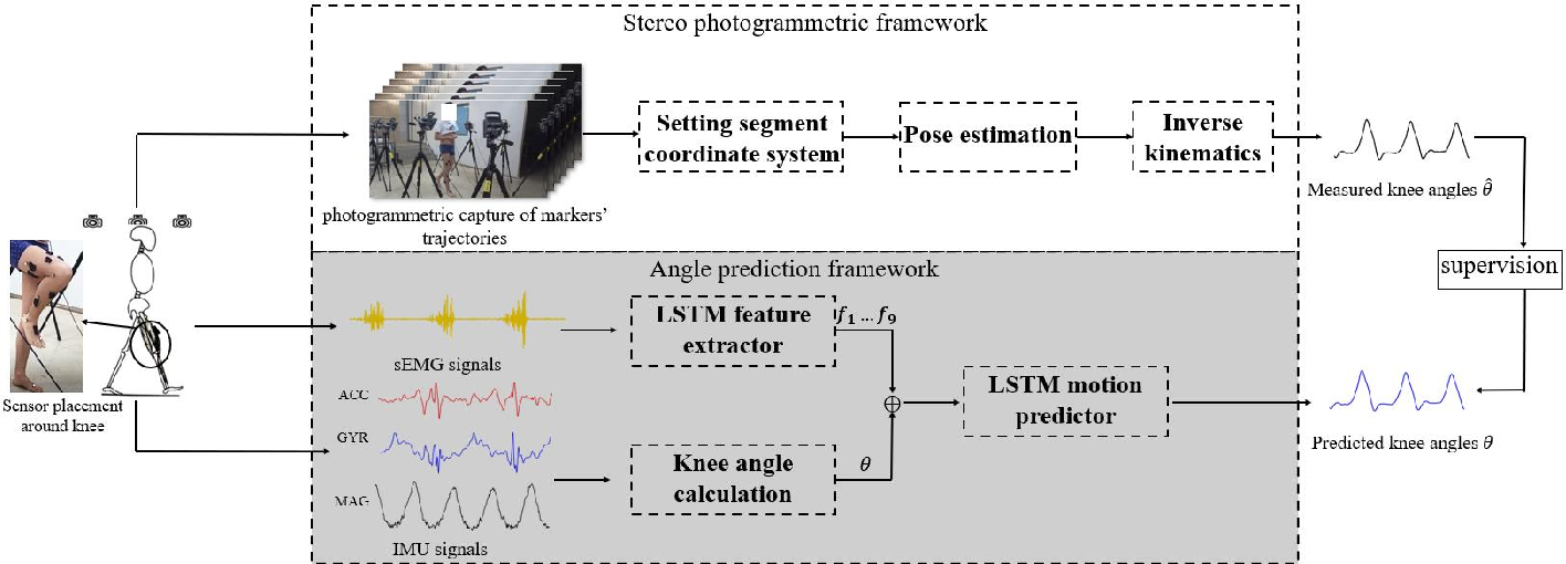 Figure 1 for Continuous Prediction of Lower-Limb Kinematics From Multi-Modal Biomedical Signals
