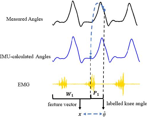 Figure 3 for Continuous Prediction of Lower-Limb Kinematics From Multi-Modal Biomedical Signals