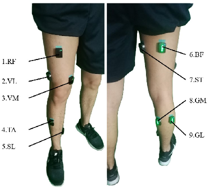 Figure 4 for Continuous Prediction of Lower-Limb Kinematics From Multi-Modal Biomedical Signals