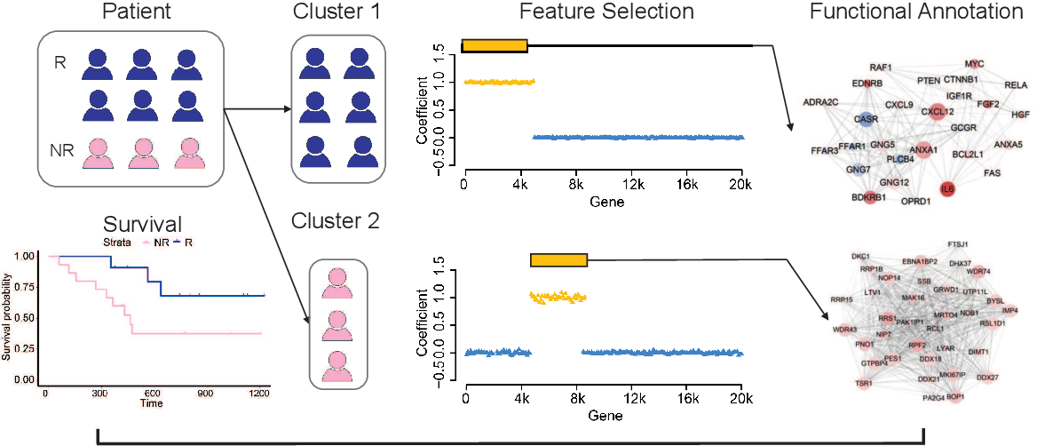 Figure 1 for Supervised clustering of high dimensional data using regularized mixture modeling
