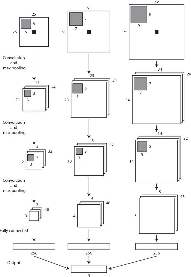 Figure 1 for Automatic segmentation of MR brain images with a convolutional neural network