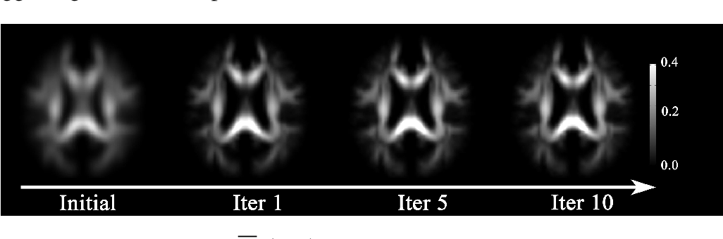 Figure 1 for Bayesian Estimation of White Matter Atlas from High Angular Resolution Diffusion Imaging