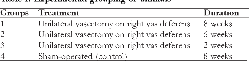 The effect of unilateral vasectomy on testosterone and