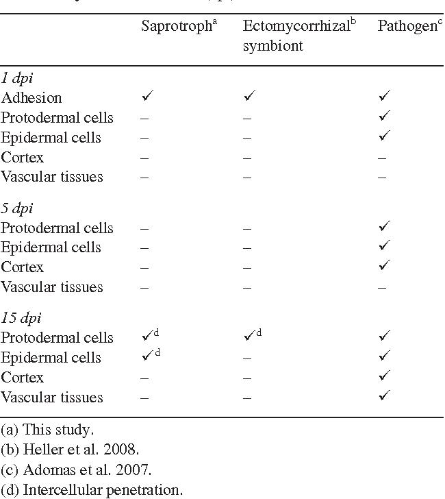 Comparative analysis of transcript abundance in pinus sylvestris table 1 malvernweather Choice Image