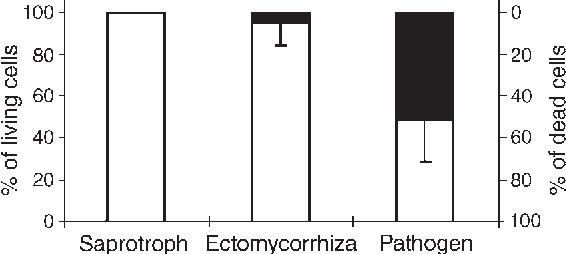 Comparative analysis of transcript abundance in pinus sylvestris figure 2 malvernweather Choice Image