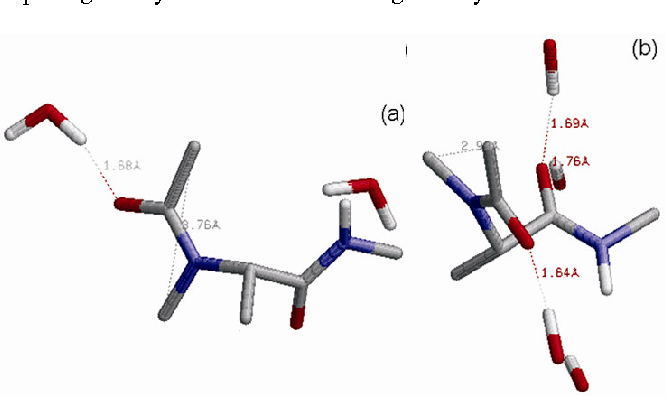 Fig. 3—Molecular view of the peptide Ac-NMeAla-NHMe in the first two most stable states after simulations for 1 ns with Φ,Ψ and ω values of -108, 124, 7˚ and -87, 124, 165˚ with water molecules within 3 Å of peptide surface [Water interactions are more favorable in the trans amide bond geometry, but the cis amide bond geometry is favored due to lesser repulsion between the methyl group of acetyl and tert-nitrogen]
