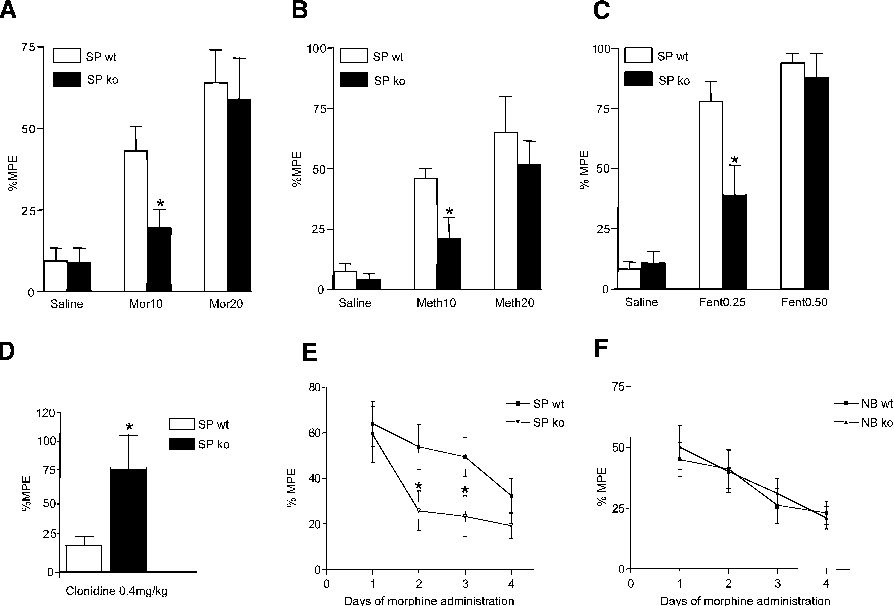 Figure 1. Spinophilin Knockout Mice Exhibit Decreased Sensitivity to the Analgesic Actions of Morphine and Accelerated Development of Analgesic Tolerance