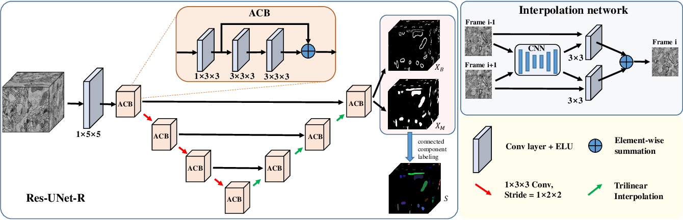 Figure 1 for Advanced Deep Networks for 3D Mitochondria Instance Segmentation