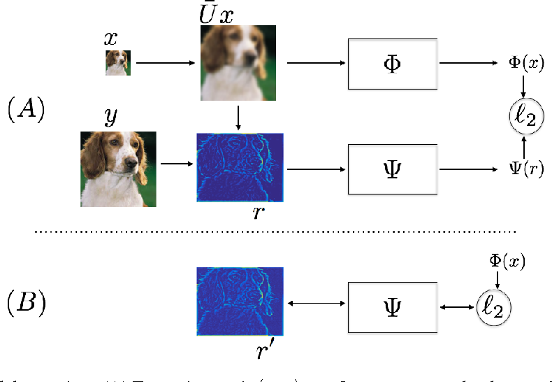 Figure 1 for Super-Resolution with Deep Convolutional Sufficient Statistics