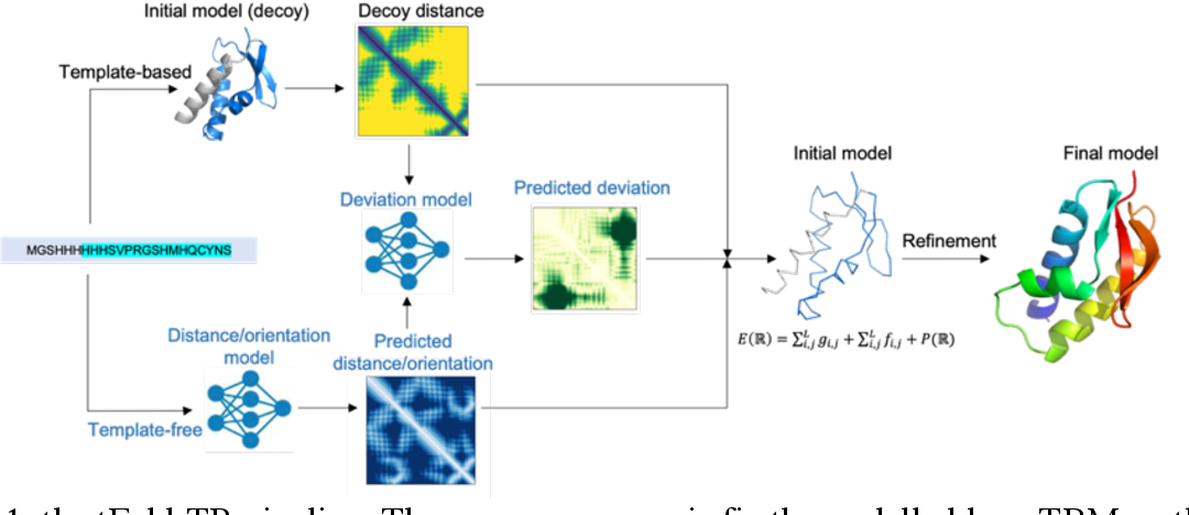 Figure 1 for tFold-TR: Combining Deep Learning Enhanced Hybrid Potential Energy for Template-Based Modeling Structure Refinement