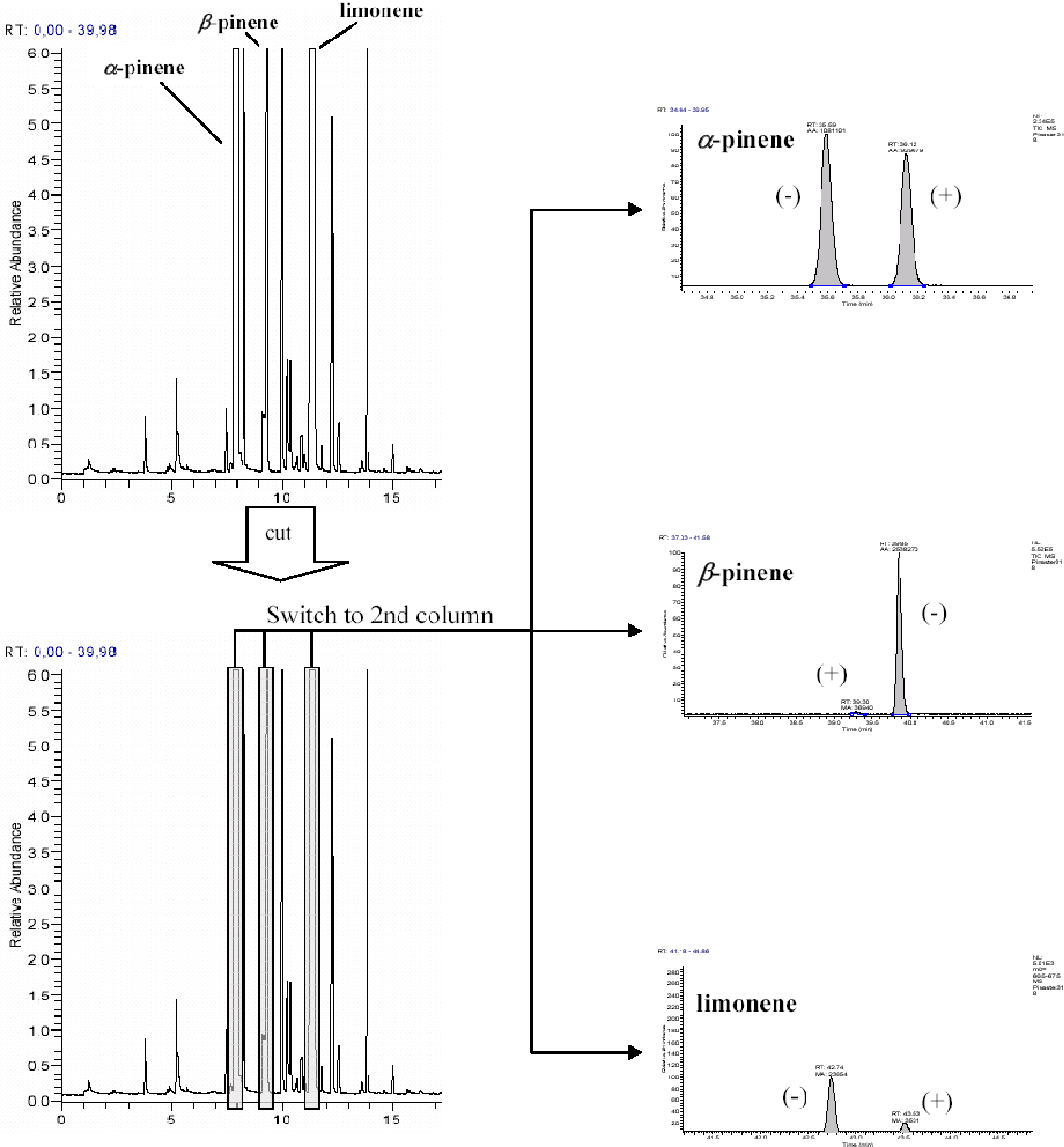 PDF] Characterization of Pinus spp  needles by gas