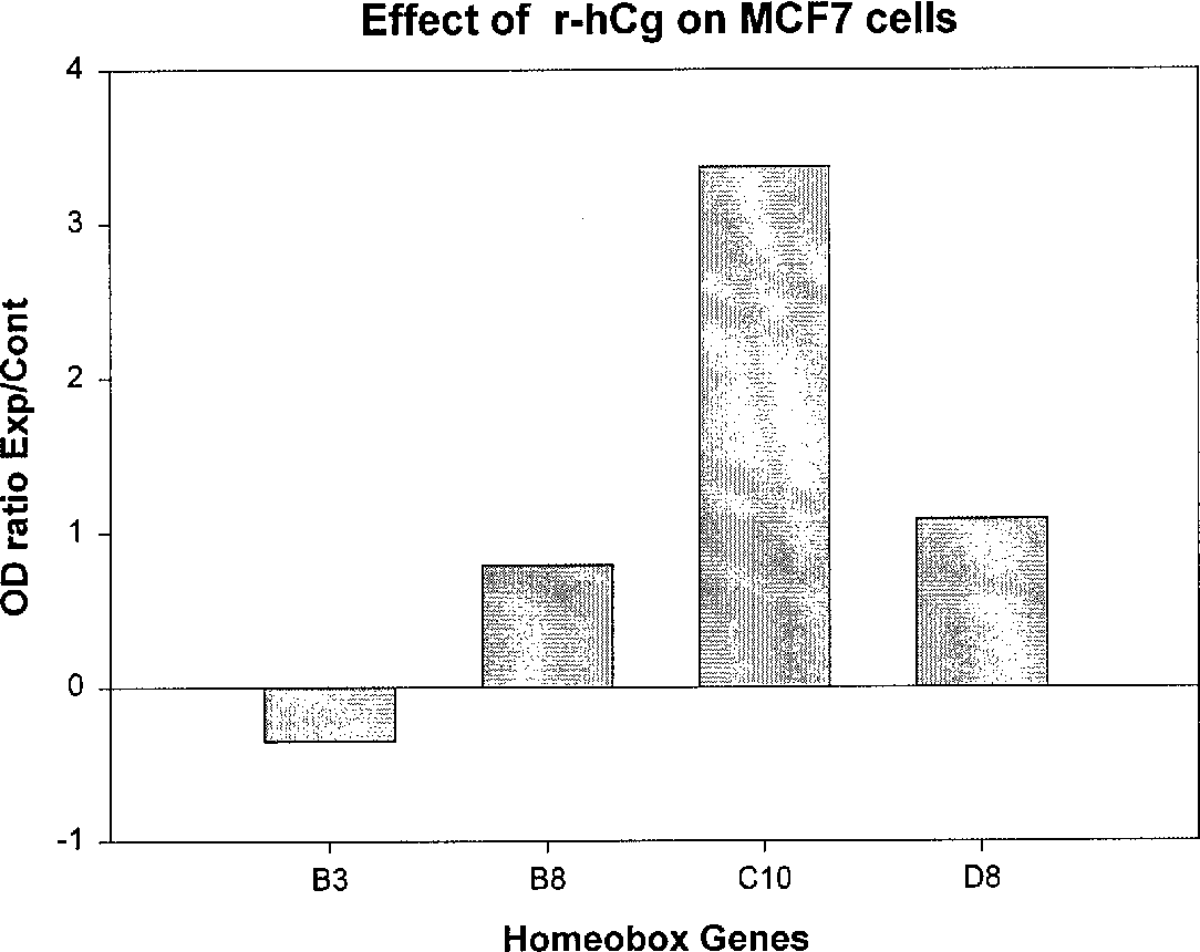 Figure 3: Histogram depicting the activation of HOX genes in MCF-7 treated with r-hCG for 48 hours at a doses of 100IU per ml.