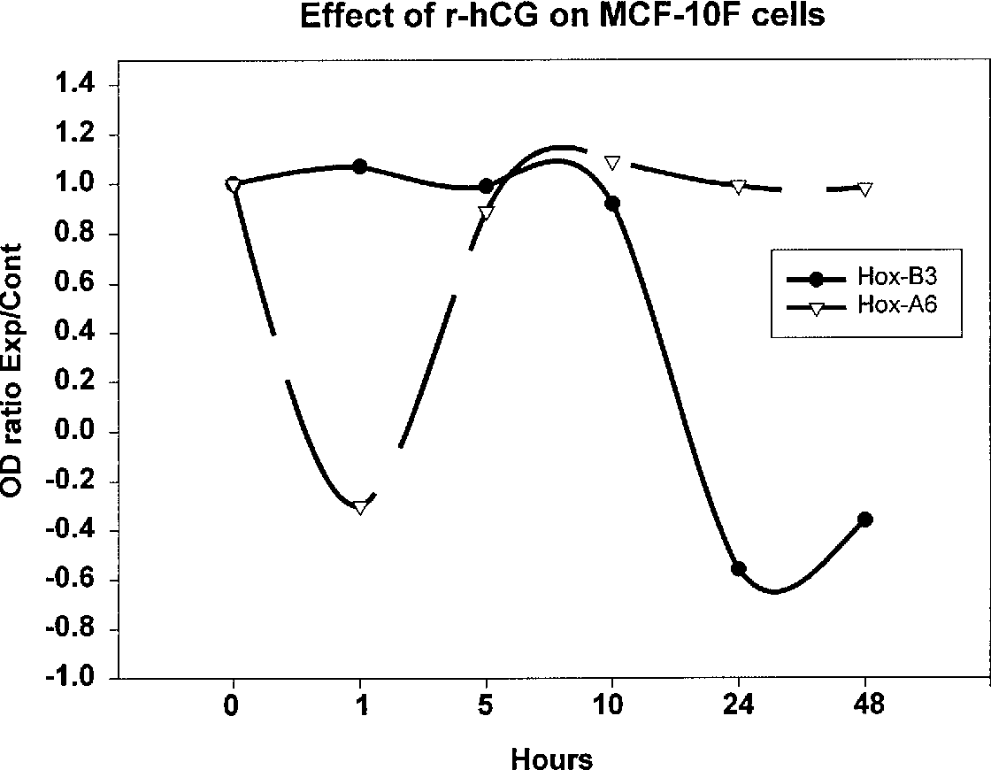 Figure 4: Effect of r-hCG on MCF 10F cells. The HOXB3 and HOXA6 genes were detected by RT-PCR at different times of treatment.