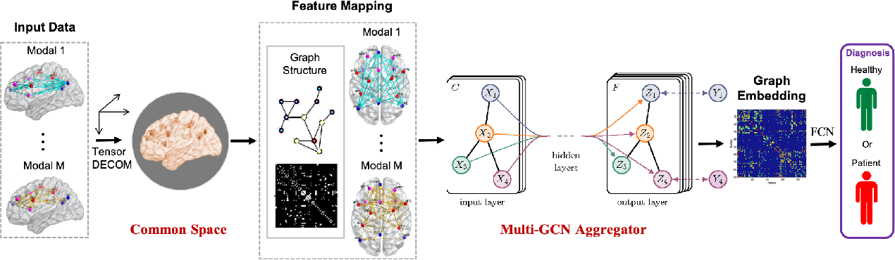 Figure 1 for Multiplex Graph Networks for Multimodal Brain Network Analysis