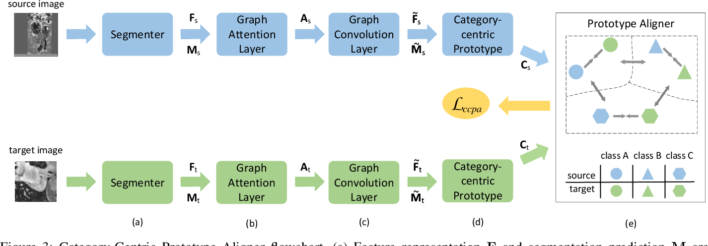 Figure 3 for Unsupervised Domain Adaptation Network with Category-Centric Prototype Aligner for Biomedical Image Segmentation
