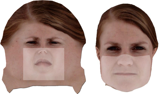 Figure 3 for Neural Face Models for Example-Based Visual Speech Synthesis