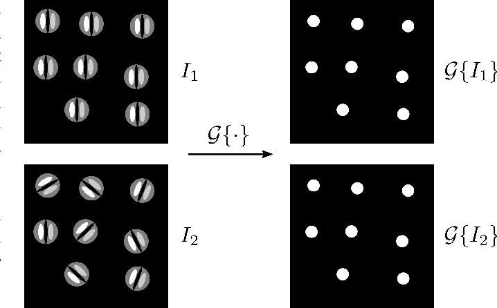 Figure 1 for 3D Solid Spherical Bispectrum CNNs for Biomedical Texture Analysis