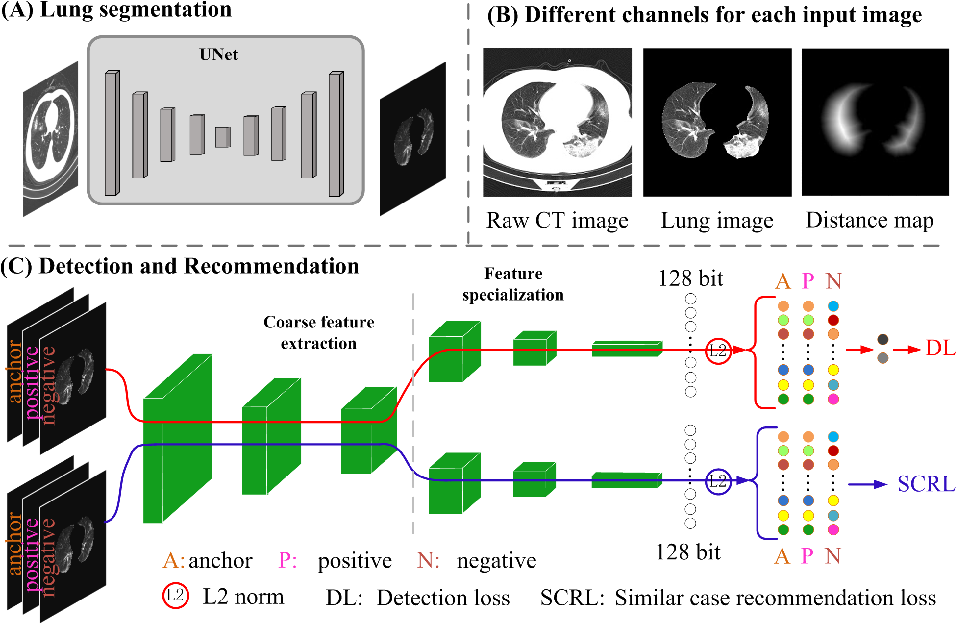 Figure 3 for DuCN: Dual-children Network for Medical Diagnosis and Similar Case Recommendation towards COVID-19