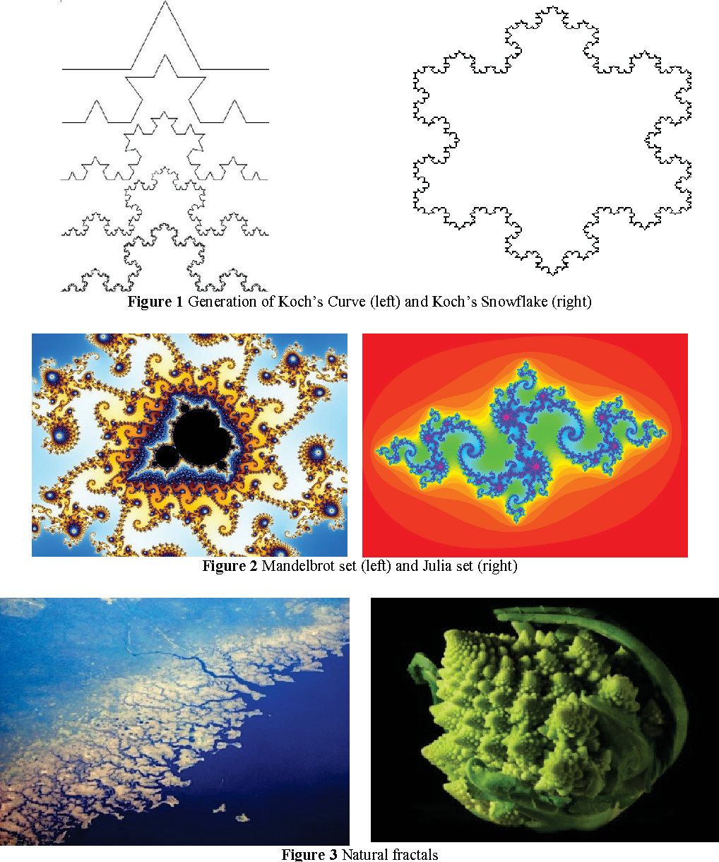 An overview of the application of fractal geometry to ecology