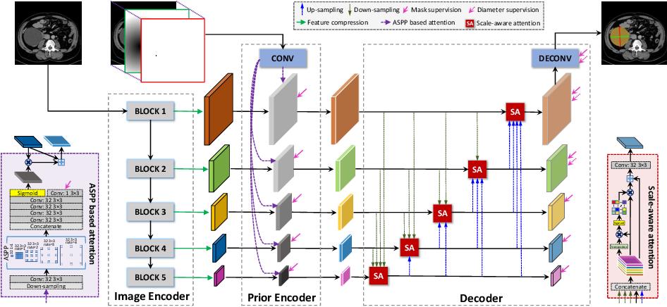Figure 1 for Lesion Segmentation and RECIST Diameter Prediction via Click-driven Attention and Dual-path Connection