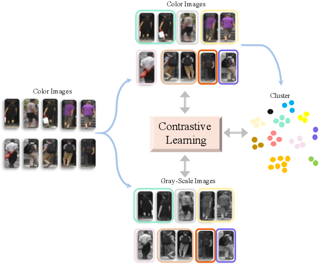 Figure 1 for Cluster-guided Asymmetric Contrastive Learning for Unsupervised Person Re-Identification