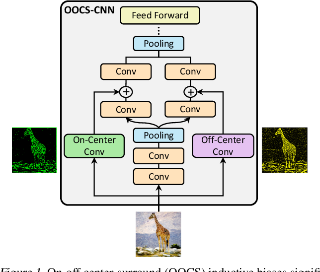 Figure 1 for On-Off Center-Surround Receptive Fields for Accurate and Robust Image Classification