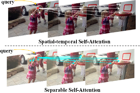 Figure 1 for SSAN: Separable Self-Attention Network for Video Representation Learning