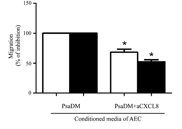 Fig. 2. CXCL8 is an important but not sole driver of neutrophil chemotaxis of AECs stimulated by PsaDM. Neutrophils chemotaxis was assayed in presence of PsaDM (3 h) treated Non-CF (white bars) and CFTRΔF508 (black bars) AECs conditioned medium (PsaDM). The contribution of CXCL8 was determined by the addition of a neutralizing antibody (aCXCL8, 50 ug/ml). *=pb0.05, compared to respective PsaDM stimulation.